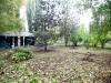 MOL_Gradina Botanica001