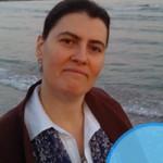 Cristina-Balan-SeminarCSR-2014-2