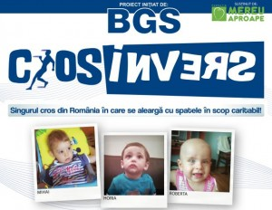 BGS_CrosInvers_2014