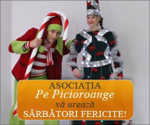banner-300-PP-sarbatori
