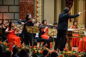 Rompetrol concert vioara
