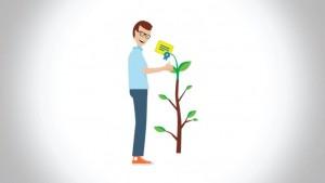 vizual GreenEndorsement