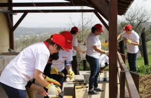 Baia Mare voluntariat EON 1