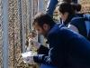 voluntar_petrom_baicoi_csrmedia_ro_2012_110