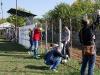 voluntar_petrom_baicoi_csrmedia_ro_2012_36