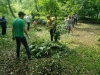 Green Work - Team Work (1)