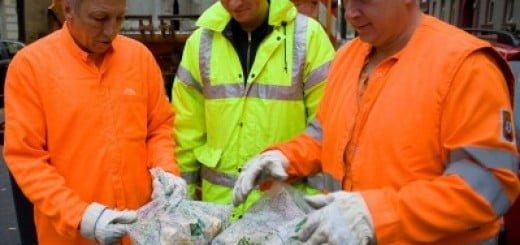 BASF_Saci_de_gunoi_biodegradabili