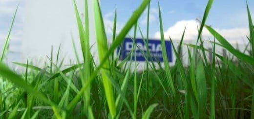 Platforma_Dacia
