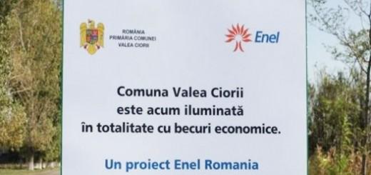 Enel_Localitatea_Valea-Ciorii_2012