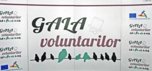 Gala_Nationala_a_Voluntarilor1_2012
