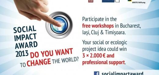Social Impact Awards 2013_Poster