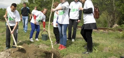 Carpatcement_Plantare_Ziua_Voluntarului_Tasca_Neamt_2013