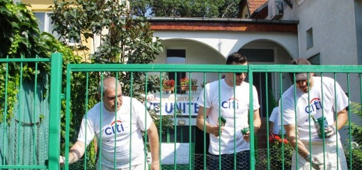 Citi Global Community_Day_2013