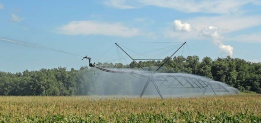 Monsanto_Romania_Caravana_Conservarea_apei_in_sol_2014