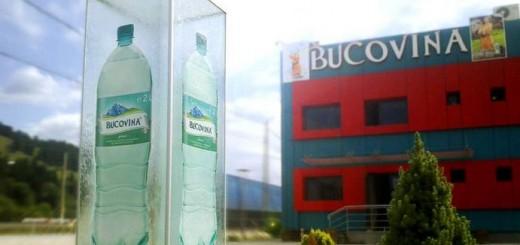 Rio_Bucovina_sediu
