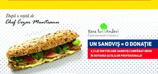 petrom-sandvisul-meserias_2
