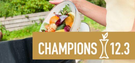 champions 12.3