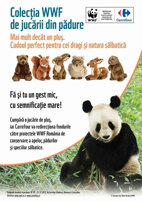 Carrefour Campania Mai mult decat un plus