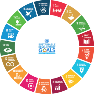 SDGs icon goals