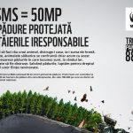 WWF: Impreuna salvam 700.000 de ha de paduri valoroase din Romania!