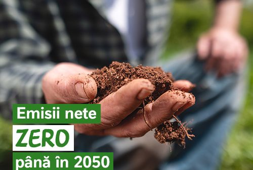 Nestel Emisii nete zero