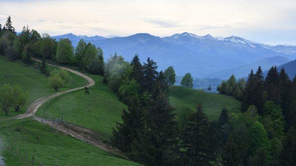 Via Transilvanica Maraton